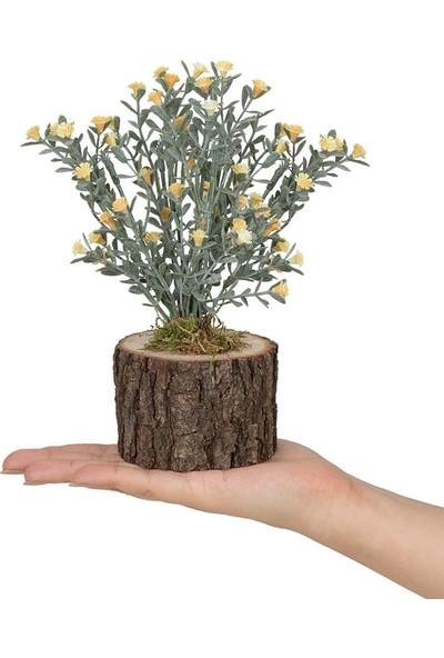 Çiçekmisin Kütük Kekik Doğal Saksıda Yapay Çiçek