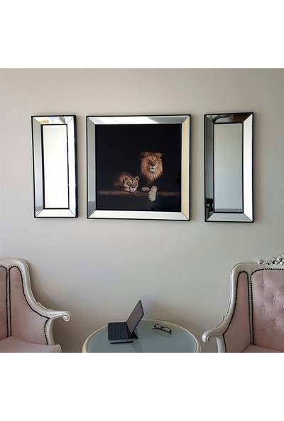 Neostill Ayna Çerçeveli Tablo Temperli Cama Uv Baskı T807