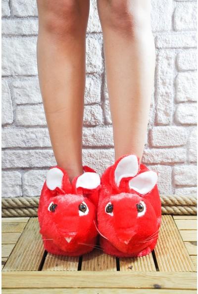 Noa Shoes Kırmızı Tavşan Kadın Paduf Ev Terliği