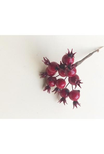 Hens Yılbaşı Minik Kırmızı Meyveler