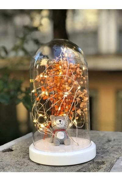 By-Lamp Işıklı Cam Fanus Çantalı Kedi Figürlü Lamba Beyaz Taban
