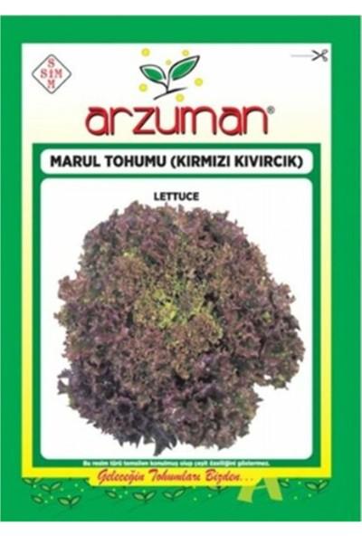 Arzuman Kırmızı Kıvırcık Marul Marul 5 gr