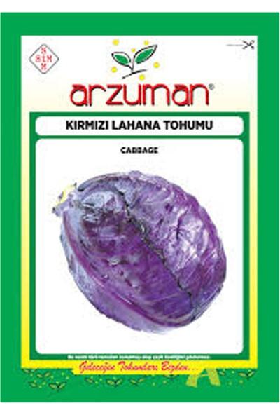Arzuman Kırmızı Mor Lahana 10 gr