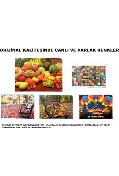 EmgeToner Kyocera Taskalfa 2551 TK-8325 4 Renk Set Cmyk Çipli Muadil Toner