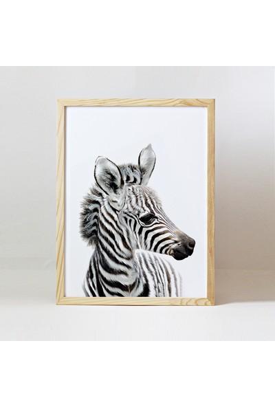 Minik Ayı Bebek Odası Baby Animals Ahşap Çerçeve - Yavru Zebra