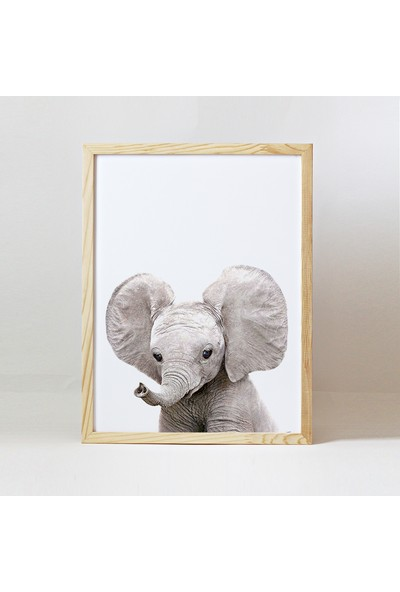 Minik Ayı Baby Animals Ahşap Çerçeve - Yavru Fil
