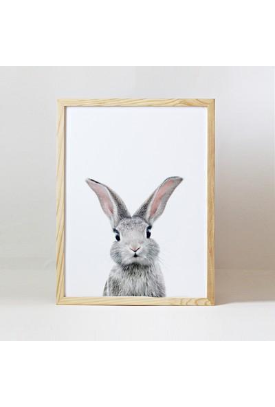 Minik Ayı Baby Animals Ahşap Çerçeve - Yavru Tavşan