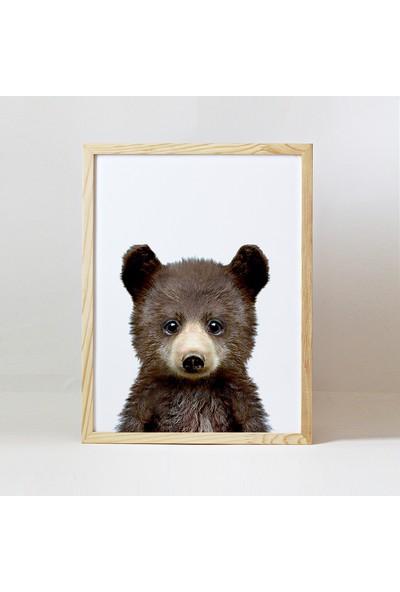 Minik Ayı Baby Animals Ahşap Çerçeve - Yavru Boz Ayı