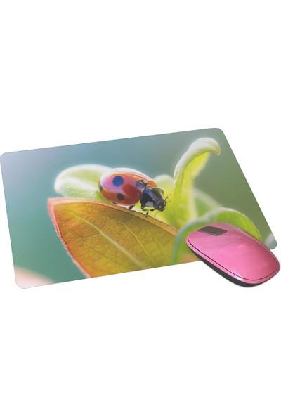Wuw Uğur Böceği Mouse Pad