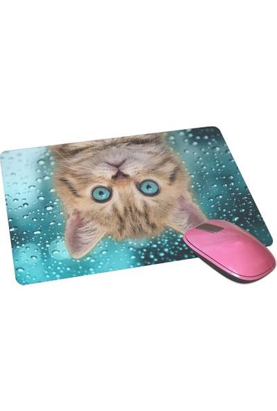 Wuw Yavru Kedi Mouse Pad