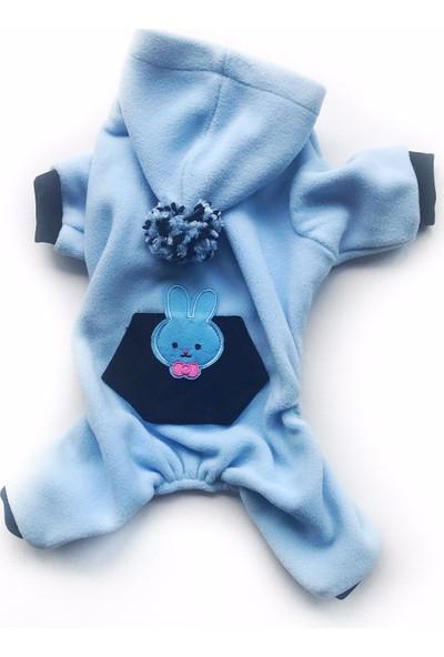 Kemique Blue Bunny Kedi Tulumu Kedi Kıyafeti
