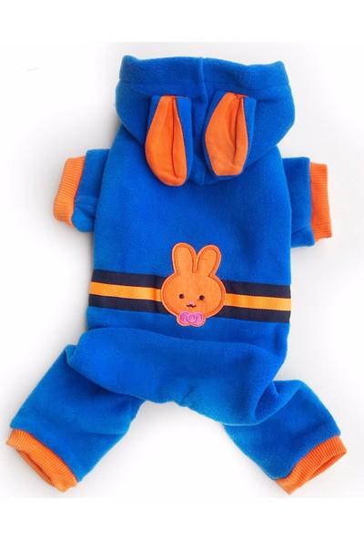 Kemique Navy Orange Bunny Kedi Tulumu Kedi Kıyafeti