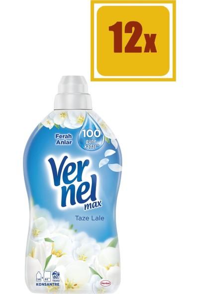 Vernel Max Taze Lale Yumuşatıcı 1440 ml 60 Yıkama 12'li Set