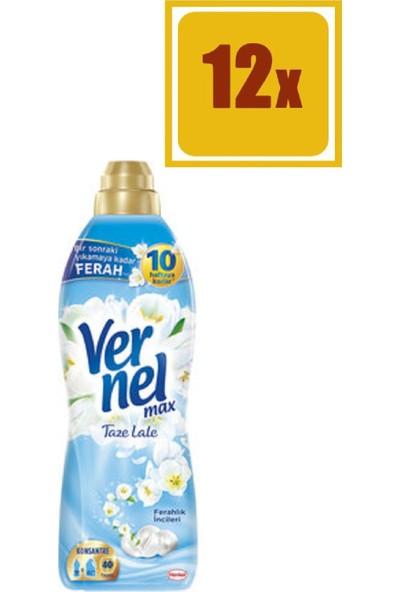 Vernel Max Taze Lale Yumuşatıcı 960 ml 40 Yıkama 12'li Set