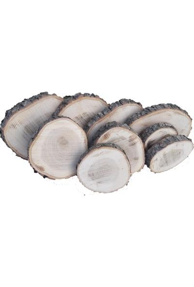 Akol Çiftliği Doğal Meşe Ağacı Kütük Dilimleri. 11 - 14 cm Zımparalı 10'lu