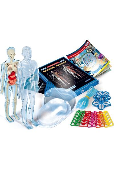 Bilim ve Oyun - İnsan Vücudu
