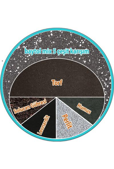 Baytol Cat Kaktüs Aloevera Lithops Succulent Teraryum Toprağı 5'li Karışım 20 lt
