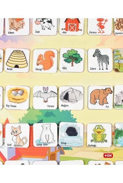 Tox Hayvanlar ve Yaşam Alanları Keçe Cırtlı Duvar Panosu