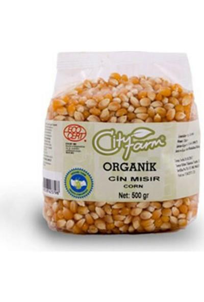 City Farm Organik Cin Mısır 500 gr