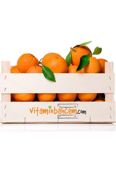 Vitamin Bahçem Portakal- Finike Portakalı 5 Kg