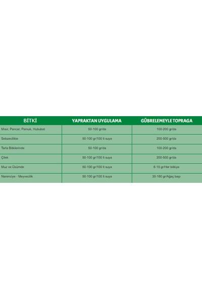 Oruç Tarım Innova Combı-Iıı Bitki Besini 1 kg