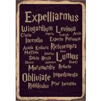 Marple's Harry Potter Spells Poster