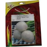 İstanbul Tohumculuk Beyaz Iri Turp Tohumu 10 gr
