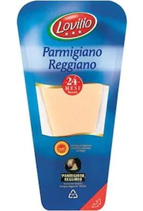 Maya Parmesan Reggiano Toz 1 kg