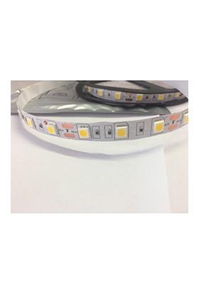 Aplus 3 Çipli 60 Ledli Iç mekan Şerit LED Günışığı 5 m