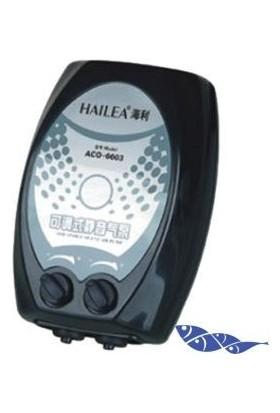 Hailea Aco-6604 Çift Çıkışlı Hava Motoru