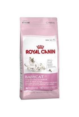 Royal Canin Babycat 34 Yavru Kedi Maması 800Gr