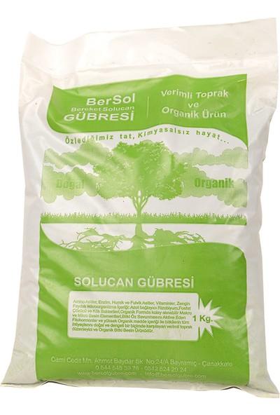 Bersol Organik Solucan Gübresi 1 kg