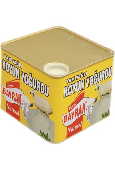 Maya Bayraklı Yoğurt Teneke Koyun 3 kg