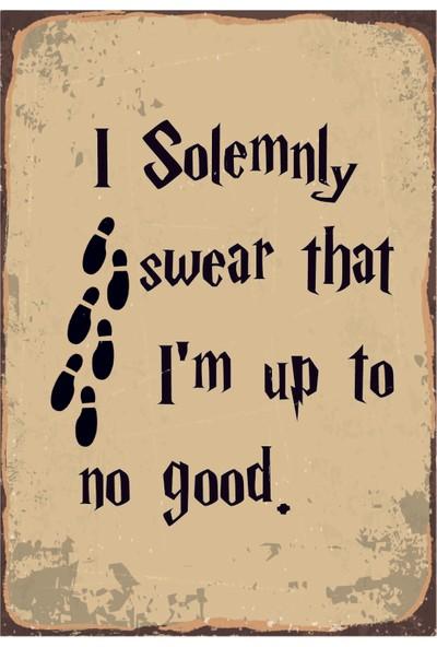 Marple's Harry Potter Solemnly Poster