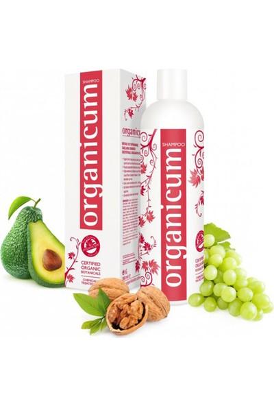Organicum Boyalı - Yıpranmış Saçlar İçin Onarıcı Şampuan 350 ml x 2 Adet
