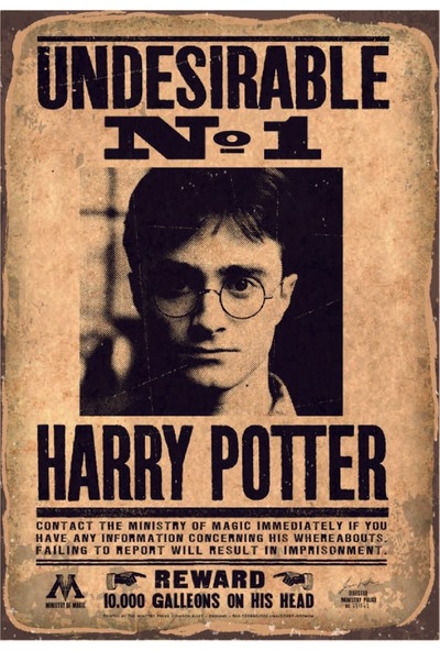Marple's Harry Potter Undesirable Poster