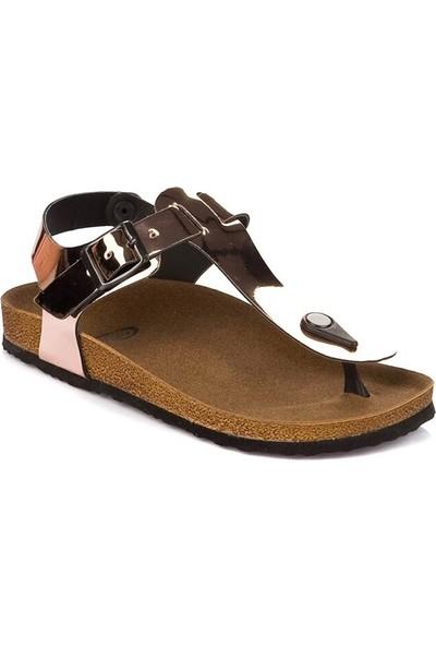 Fox Shoes Bronz Kadın Sandalet B777805034