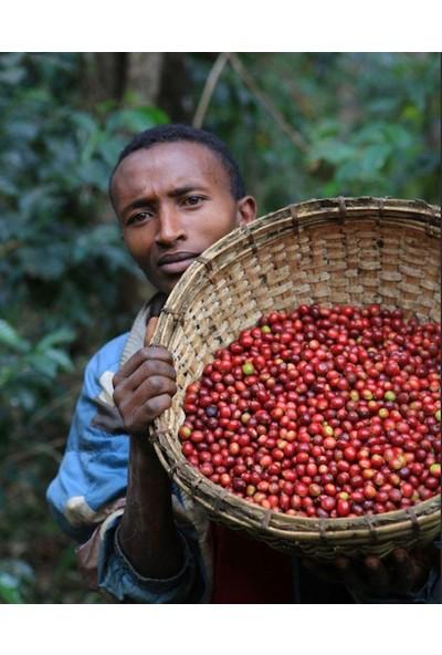 Mineiro Coffee Single Origin Etiyopya Yirgacheffe Kahve 1 kg