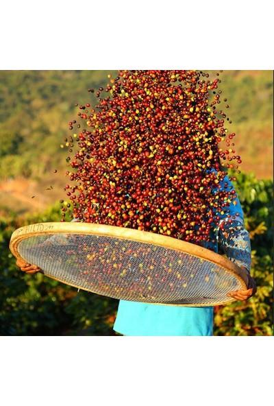 Mineiro Coffee Single Origin Kenya Aa Plus Kahve 1 kg