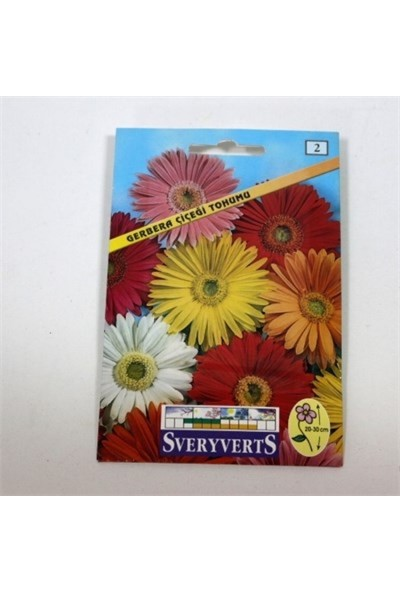Greenmall Gerbera Çiçeği Tohumu