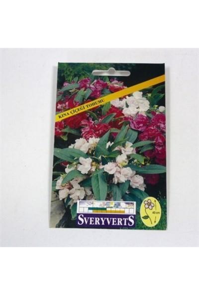 Greenmall Kına Çiçeği Tohumu