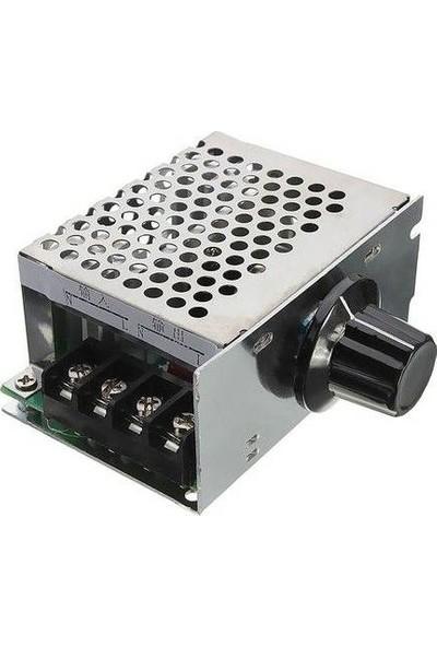 Robot Diyarı Regülatör Ac 220V 4000W Dimmer Kapalı Kasa