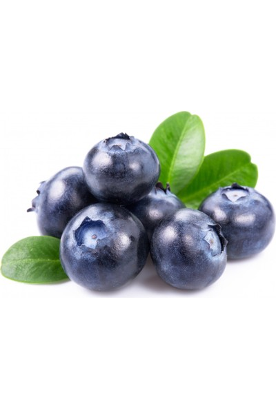 Chef's Garden Tropikal Sepet Yaban Mersini (Blue Berry) 125 gr