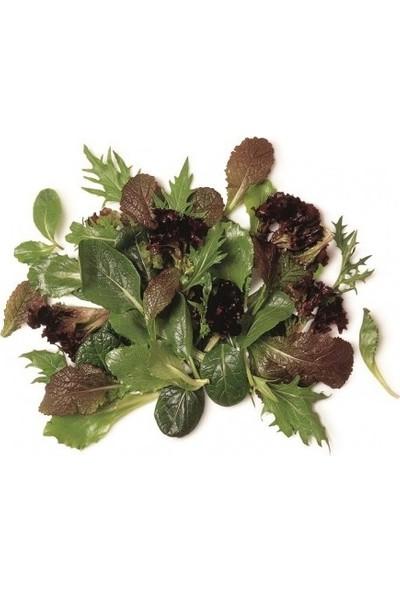 Erüst Tropikal Sepet Maskolin Salata 150 gr
