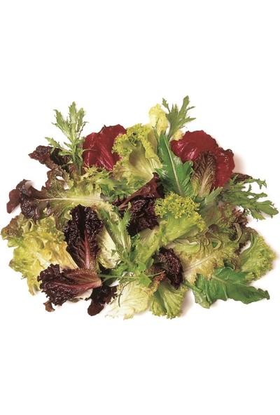 Erüst Tropikal Sepet Akdeniz Salata 150 gr