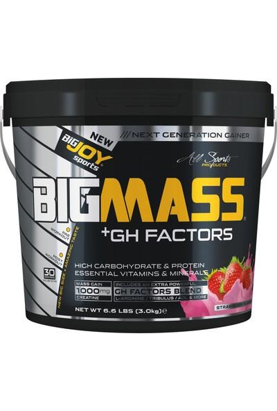 Bigjoy Sports Bigmass Mass Gainer Gh factors Karbonhidrat Protein Çilek Aroma 3000g