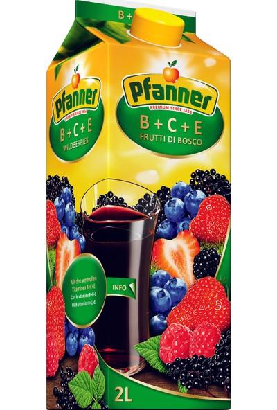 Pfanner Meyve Suyu B+C+E Orman Meyveli 2 Lt