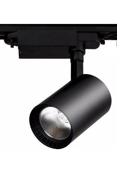 Elıght Ledli Ray Spot Siyah Kasa 30 Watt Beyaz Işık 6500K