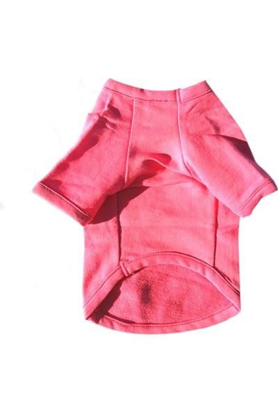 Chili Köpek Sweatshirt Fuşya M