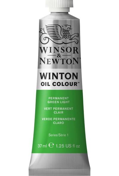 Winsor & Newton Permanent Green Light